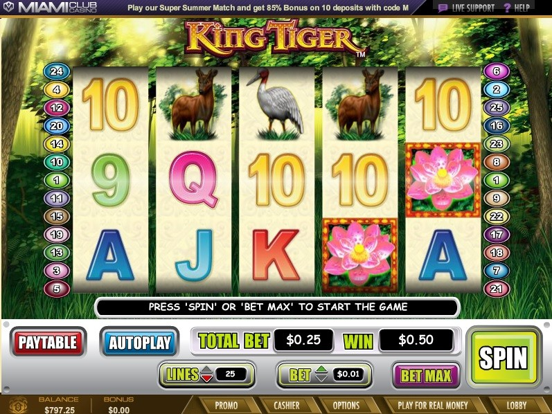 hollywood casino earnings